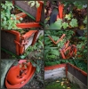 Fotowalk Bergpark Eppstein - Fotograf Christoph Fuhrmann