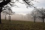 Nebel - Fotograf Christoph Fuhrmann