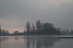 Nebel - Fotografin Jutta R. Buchwald
