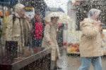 Monatsthema Spiel mit Glas und Wasser - Fotografin Nicole Gieseler