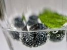 Monatsthema Spiel mit Glas und Wasser - Fotograf Henry Mann