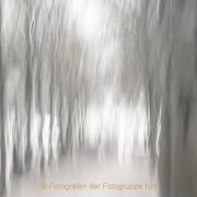 Monatsthema Bewegungen, Schwingungen - Fotograf Joachim Clemens