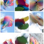 Monatsthema Bewegungen, Schwingungen - Fotografin Jutta R. Buchwald