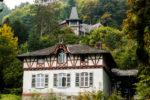 Bergpark Eppstein