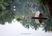 Spiegelungen - Fotograf Henry Mann