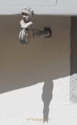 Thema Schatten -Fotograf Henry Mann