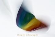 Fotowalk Wi-Kurviertel - Fotografin Jutta R. Buchwald (Brennweite 24 mm)