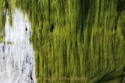 Monatsthema Abstrakt - Fotograf Helmut Joa