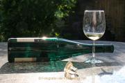 """Monatsthema """"alles was mit Wein zu tun hat"""" - Fotograf Werner Ch. Buchwald"""