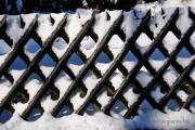 Winterlichter Fotograf Albert Wenz