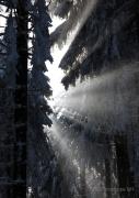 Winterlichter Fotograf Helmut Joa