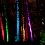 Winterlichter Fotografin Jutta R. Buchwald