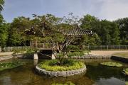 Fotowalk Koreanischer Garten - Fotograf Albert Wenz