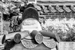 Fotowalk Koreanischer Garten - Fotografin Jutta R. Buchwald