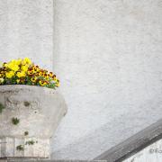 Fotowalk Darmstadt - Fotograf Thomas Stähler