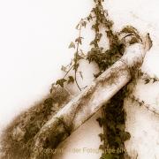 Fotowalk Hofheim (Brennweite 50 mm VF) - Fotografin Jutta R. Buchwald