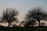 Jacobi-Park - Fotografin Jutta R. Buchwald
