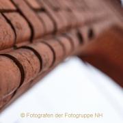 Fotowalk Zieglerort Wi-Bierstadt - Fotograf Thomas Stähler