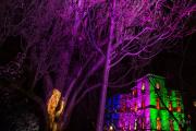 Winterlichter im Palmengarten - Fotografin Jutta R. Buchwald