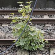 Stefan_Zimmermann_Bahnhof-05