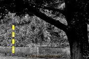 Fotowalk Blickachsen Kurpark Bad Homburg - Fotografin Jutta R. Buchwald
