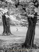Fotowalk Blickachsen Kurpark Bad Homburg - Fotograf Stefan Zimmermann