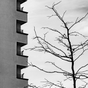 Fotowalk FFM-Niederrad - Fotografin Anne Jeuk