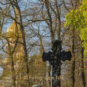 Fotowalk Wiesbaden Neroberg - Fotograf Joachim Clemens