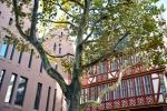 Fotowalk Neue Altstadt FFM - Fotograf Albert Wenz