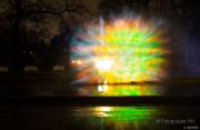 2015 Winterlichter im Palmengarten - Fotograf Michael Schwarz
