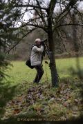 MakingOf - Mystischer Wald