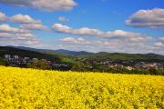 Niedernhausen - Fotograf Albert Wenz