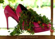 Monatsthema Schuhe - Fotografin Anne Jeuk