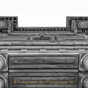 Monatsthema Froschperspektive - Fotografin Jutta R. Buchwald