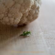 Monatsthema 'In der Küche' - Fotografin Jutta R. Buchwald