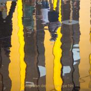Monatsthema Gelb dominiert - Fotografin Nicole Gieseler