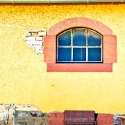 Monatsthema Gelb dominiert - Fotograf Henry Mann