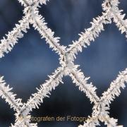 Monatsthema Eis - Fotograf Albert Wenz