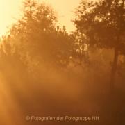 Monatsthema Zauberhaftes, Verträumtes - Fotograf Helmut Joa