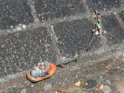 Monatsthema Fundstücke am Boden - Fotografin Anne Jeuk