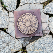 Monatsthema Fundstücke am Boden - Fotografin Jutta R. Buchwald