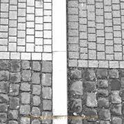 Monatsthema Fundstücke am Boden - Fotograf Joachim Clemens