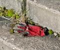 Monatsthema Fundstücke am Boden - Fotograf Henry Mann
