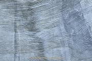 Monatsthema Abstrakt - Fotograf Albert Wenz