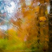 Monatsthema Abstrakt - Fotografin Izabela Reich