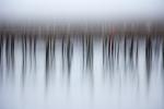Monatsthema Abstrakt - Fotografin Nicole Gieseler