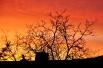 Monatsthema Rot dominiert - Fotograf Albert Wenz