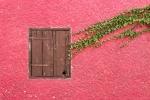 Monatsthema Rot dominiert - Fotograf Joachim Clemens
