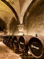 """Monatsthema """"alles was mit Wein zu tun hat"""" - Fotograf Henry Mann"""