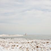 Gefrorenes - Fotograf Thomas Stähler